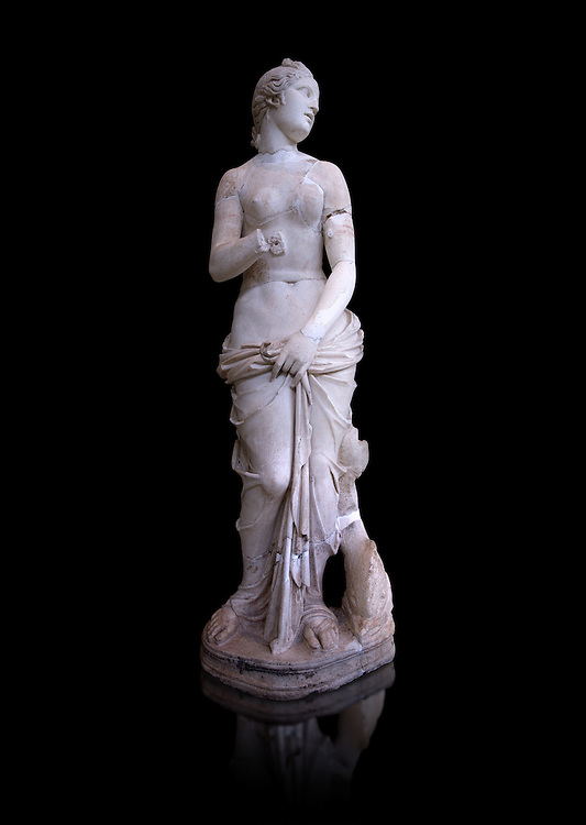 The Roman Venus Statue, the Goddess of Love, follows the style of a modest Aphrodite, known by other Roman replicas are copies of Ttththird century BC Hellenistic Greek statues now lost. Dated circa 1st quarter of second century AD, the Venus statue was excavated from the Odeon of Carthage. The National Bardo Museum, Tunis.  Against a black background. .<br /> <br /> If you prefer to buy from our ALAMY STOCK LIBRARY page at https://www.alamy.com/portfolio/paul-williams-funkystock/greco-roman-sculptures.html . Type -    BARDO    - into LOWER SEARCH WITHIN GALLERY box - Refine search by adding a subject, place, background colour, museum etc.<br /> <br /> Visit our CLASSICAL WORLD HISTORIC SITES PHOTO COLLECTIONS for more photos to download or buy as wall art prints https://funkystock.photoshelter.com/gallery-collection/The-Romans-Art-Artefacts-Antiquities-Historic-Sites-Pictures-Images/C0000r2uLJJo9_s0c