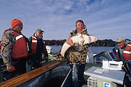 Fisheries Managment-FWS and Menominee Tribal fisheries biologists net, measure and tag Lake Sturgeon on Wisconsin's Legend Lake.<br /> <br /> ENGBRETSON PHOTO