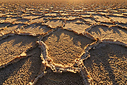Salt Formations on Playa at Sunset, Death Valley National Park, California