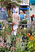 Truro Flower Market 01