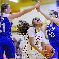 Tohatchi Cougar Kalian Mitchell (5) maneuvers past Dexter Demons Marlou Blankvoort (21) and Briana Loya (13) Friday at Tohatchi High School.