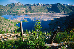 Goat Rocks Wilderness and Spirit Lake from Donnybrook Overlook, Mt. St. Helens National Volcanic Monument, Washington, US