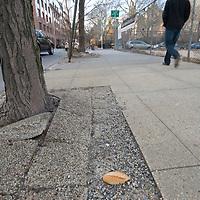 A man walks along East 35th Street in New York City.