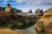 Point of the Arches along the rugged coastline of Olympic National Park