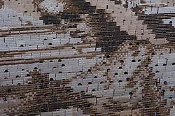 October 28, 2016 - Bangkok, Thailand - A mosaic portrait of the late Thai King Bhumibol Adulyadej is displayed as the 1,250 students practice flipping boards, at Assumption College in Bangkok, Thailand, on October 28, 2016. (Credit Image: © Anusak Laowilas/NurPhoto via ZUMA Press)
