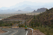 Brook Allen cycles through a cactus forest on Highway 1 - Baja - Mexico
