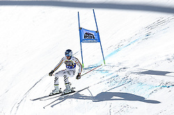 March 16, 2019 - El Tarter, Andorra - Alexander Schmid of Deutchland Ski Team, during Men's Giant Slalom Audi FIS Ski World Cup race, on March 16, 2019 in El Tarter, Andorra. (Credit Image: © Joan Cros/NurPhoto via ZUMA Press)