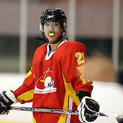 Xia Tianxiang, China, during the China V New Zealand match during the 2012 IIHF Ice Hockey World Championships Division 3 held at Dunedin Ice Stadium. Dunedin, Otago, New Zealand. 21st January 2012. Photo Tim Clayton