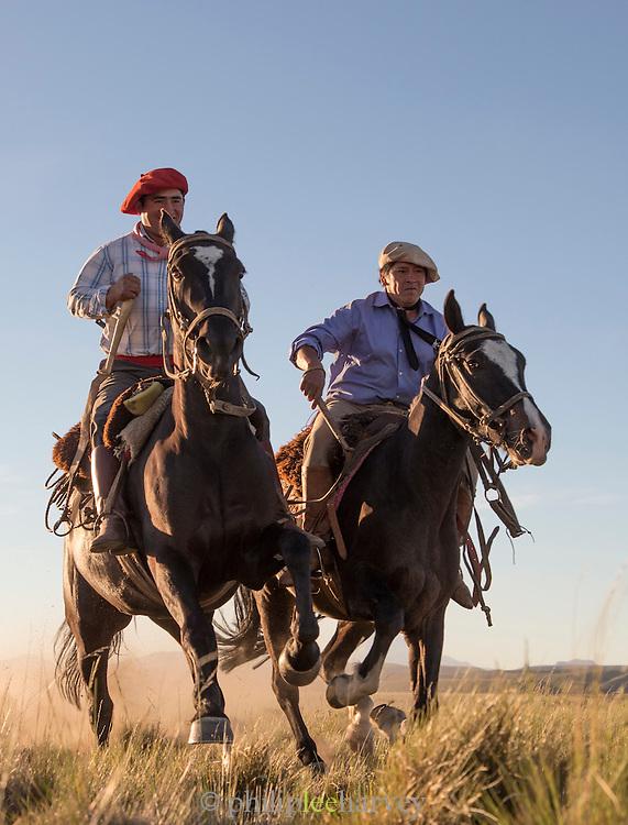 Gauchos canter across the plain, Estancia Huechahue, Patagonia, Argentina, South America