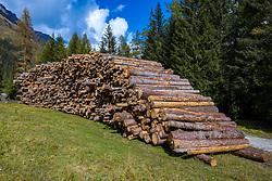 THEMENBILD - Enorm große Windwurfflächen erinnern in Osttirol an das Sturmtief Vaia, das Ende Oktober 2018 Teile des Bezirkes heimsuchte. Besonders stark in Mitleidenschaft gezogen wurden damals das Kalsertal mit 425 Hektar Waldfläche. Hier im Bild Baumstämme auf einem Holzlagerplatz im Ortsteil Burg Taurer. Aufgenommen am Samstag 10. Oktober 2020 in Kals // Enormously large windthrow areas in East Tyrol are reminiscent of the storm Vaia, which hit parts of the district at the end of October 2018. The Kalsertal valley, with 425 hectares of forest, was particularly badly affected at that time. Here in the picture tree trunks on a timber stockyard in the district Burg Taurer on Saturday 10 October 2020 in Kals. EXPA Pictures © 2020, PhotoCredit: EXPA/ Johann Groder