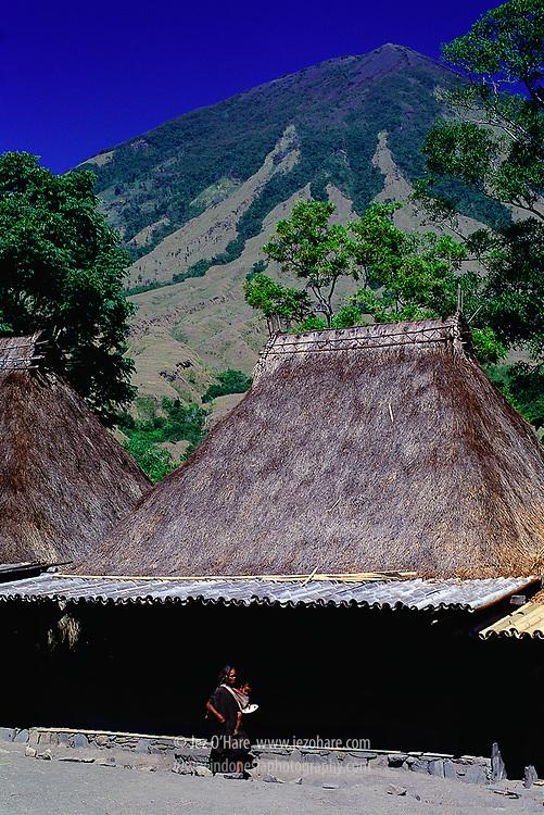 Bena, megalithic village on the slopes of Mount Inere, Bajawa, Ngada, Flores, East Nusa Tenggara, Indonesia.