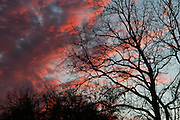 Dark clouds highlighted with sunset orange contrast with blue sky above a somber silhouette of a bare tree in Parke County, Indiana.