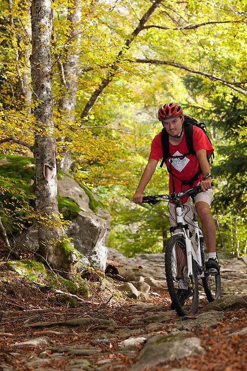 Mountain biker in autumn scenery