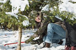 Young man sawing a spruce tree for Christmas, Bavaria, Germany