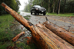 October 7, 2016 - Tallahassee, FL, USA - A fallen tree partially blocks Front Street as Hurricane Matthew blows into Astor on Friday, October 7, 2016. (Credit Image: © Stephan M. Dowell/TNS via ZUMA Wire)