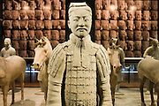 Terracotta warrior & horses on display in the Shaanxi History Museum, Xian, China