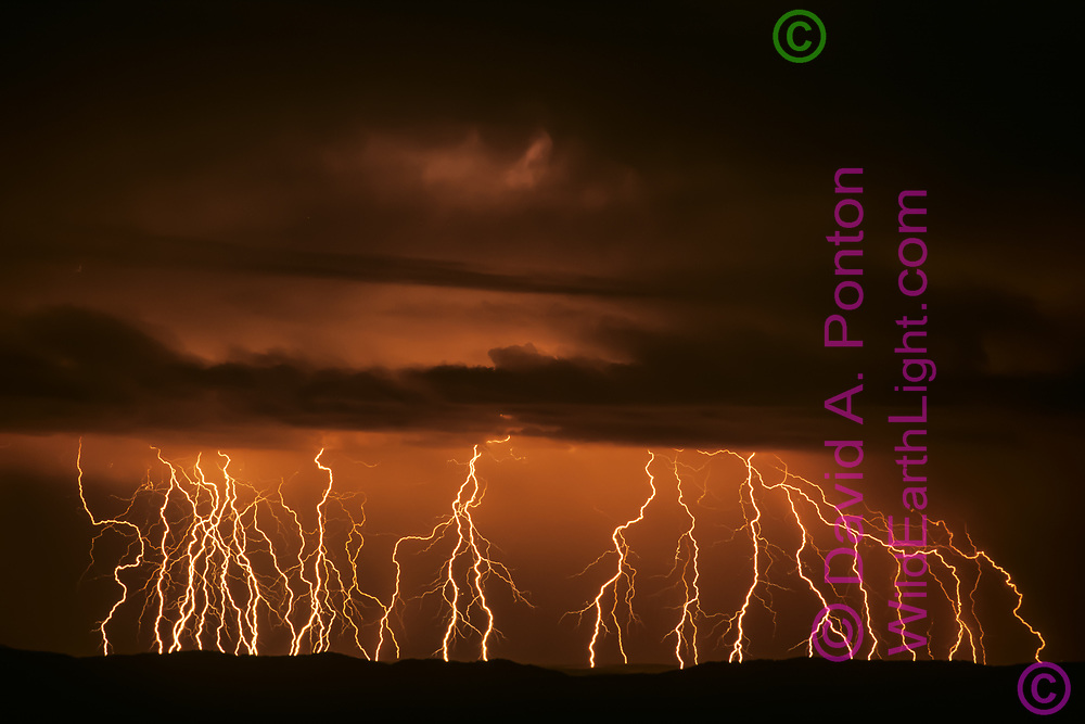 Time exposure of active lightning storm, recording 31 strikes as it passes along the Sierra Nacimiento, New Mexico,© David A. Ponton