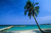 Bay Islands, Roatàn. West Bay, the most beautiful beach of Roatàn island.