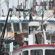 Commercial fishing fleet, Gloucester, Massachusetts