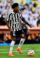 Palmeiras v Santos - Copa CONMEBOL Libertadores 2020 Final