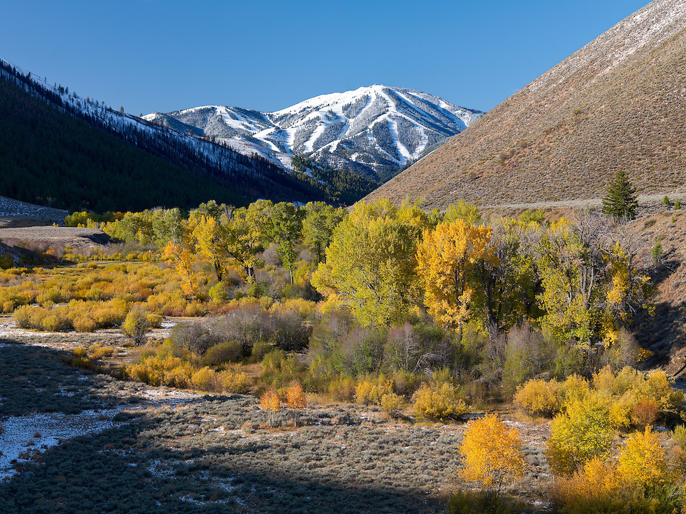 Open Edition Fine Art Photograph<br /> Clear Blue Sky and Autumn Colors along Trail Creek with Fresh Snow on Sun Valley's Baldy Mountain
