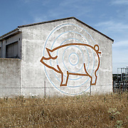 Pig farm near Astorga, Leon province, Spain . The WAY OF SAINT JAMES or CAMINO DE SANTIAGO following the Silver Way, between Seville and Astorga, SPAIN. Tradition says that the body and head of St. James, after his execution circa. 44 AD, was taken by boat from Jerusalem to Santiago de Compostela. The Cathedral built to keep the remains has long been regarded as important as Rome and Jerusalem in terms of Christian religious significance, a site worthy to be a pilgrimage destination for over a thousand years. In addition to people undertaking a religious pilgrimage, there are many travellers and hikers who nowadays walk the route for non-religious reasons: travel, sport, or simply the challenge of weeks of walking in a foreign land. In Spain there are many different paths to reach Santiago. The three main ones are the French, the Silver and the Coastal or Northern Way. The pilgrimage was named one of UNESCO's World Heritage Sites in 1993. When there is a Holy Compostellan Year (whenever July 25 falls on a Sunday; the next will be 2010) the Galician government's Xacobeo tourism campaign is unleashed once more. Last Compostellan year was 2004 and the number of pilgrims increased to almost 200.000 people.