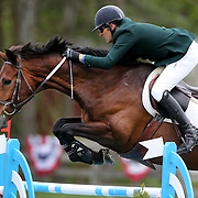 NORTH SALEM, NEW YORK - May 15:  Paul O'Shea, Ireland, riding NLF Favorite, in action during The $50,000 Old Salem Farm Grand Prix presented by The Kincade Group at the Old Salem Farm Spring Horse Show on May 15, 2016 in North Salem. (Photo by Tim Clayton/Corbis via Getty Images)