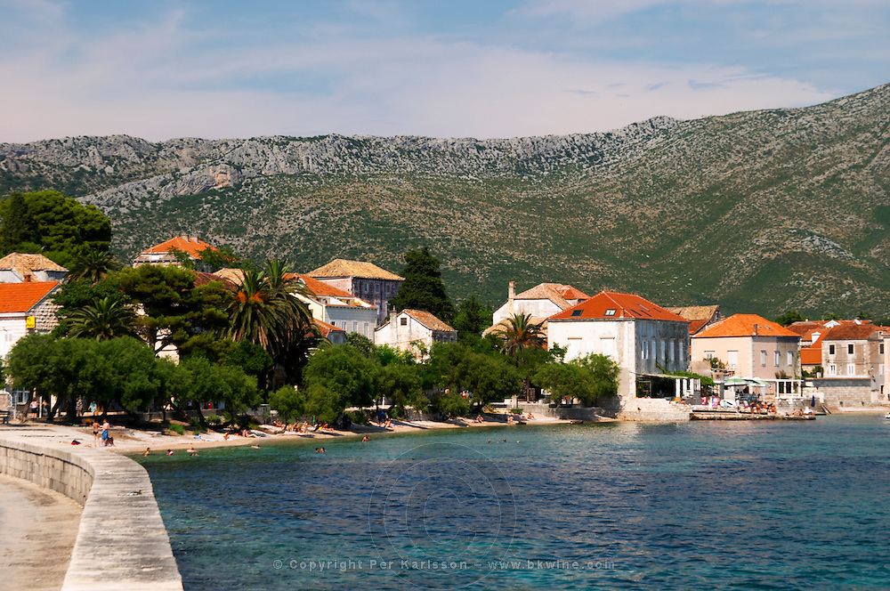 A view over the village, the beach with palm and pine trees and the massive mountains on the peninsula with undulating pattern. Mount Sveti Ilija mountain. Orebic town, holiday resort on the south coast of the Peljesac peninsula. Orebic town. Peljesac peninsula. Dalmatian Coast, Croatia, Europe.