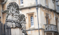 Heads of 'Emperors' oxford during lockdown 2020 photo by Brian Jordan