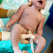 Milan, Italy, August 22nd 2008. San Paolo Hospital. The first cry of a child born of Srylankan parents in Italy...Milano, Italia, 22 Agosto 2008. Ospedale San Paolo. Il primo vagito di una bimba nata da genitori Srylankesi in italia.
