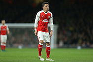 Mesut Ozil of Arsenal looking on. UEFA Champions league group A match, Arsenal v Paris Saint Germain at the Emirates Stadium in London on Wednesday 23rd November 2016.<br /> pic by John Patrick Fletcher, Andrew Orchard sports photography.