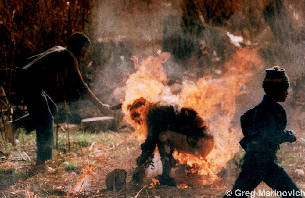 IPMG0036 South Africa, Soweto, 1990..A man hacks at Lindsay Tshabalala, a Zulu killed as a suspected Inkatha member by African National Congress supporters.  Over 3,000 people died in 1990 as a result of ANC-Inkatha violence that was provoked by a state-sponsored destabilisation programme, prior to South Africa's first democratic elections in 1994. This was part of a 1991 Pulitzer Prize winning series. .Photograph by Greg Marinovich/South Photographs