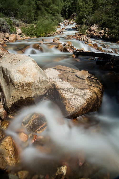Rapid water flowing through Elkhorn Creek into the Cache la Poudre River in the Roosevelt National Forest near Rustic, Colorado.