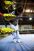 Referee grabbing his crotch in pain hanging on ropes in ring. Lucha Libre wrestling origniated in Mexico, but is popular in other latin Amercian countries, including in La Paz / El Alto, Bolivia. Male and female fighters participate in the theatrical staged fights to an adoring crowd of locals and foreigners alike.