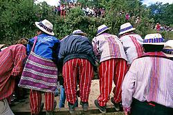 Horse Race Todos Santos Festival