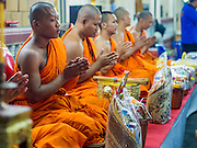 "07 MARCH 2015 - NAKHON CHAI SI, NAKHON PATHOM, THAILAND: Buddhist monks lead a chanting service during the Wat Bang Phra tattoo festival. Wat Bang Phra is the best known ""Sak Yant"" tattoo temple in Thailand. It's located in Nakhon Pathom province, about 40 miles from Bangkok. The tattoos are given with hollow stainless steel needles and are thought to possess magical powers of protection. The tattoos, which are given by Buddhist monks, are popular with soldiers, policeman and gangsters, people who generally live in harm's way. The tattoo must be activated to remain powerful and the annual Wai Khru Ceremony (tattoo festival) at the temple draws thousands of devotees who come to the temple to activate or renew the tattoos. People go into trance like states and then assume the personality of their tattoo, so people with tiger tattoos assume the personality of a tiger, people with monkey tattoos take on the personality of a monkey and so on. In recent years the tattoo festival has become popular with tourists who make the trip to Nakorn Pathom province to see a side of ""exotic"" Thailand.   PHOTO BY JACK KURTZ"