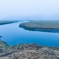 A tidal creek winds through a Rye, New Hampshire salt marsh on a foggy morning.