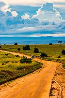 Looking down a dirt road in Murchison Falls National Park, Uganda.