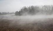 Morning fog clearing from wet fields, Alderton, Suffolk, England
