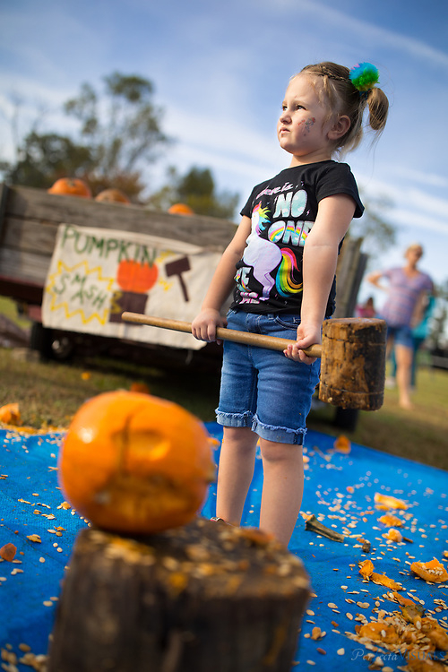 Dixie Scott, 4, sizes up her pumpkin.<br /> <br /> Quaker Lake Camp's 2017 Pumpkin Festival.<br /> <br /> Photographed, Saturday, October 21, 2017, in Greensboro, N.C. JERRY WOLFORD  / Perfecta Visuals