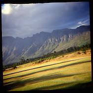 Ongoing landscape project, through a plastic lens. Stellenbosh, South Africa