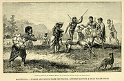 Hottentots. — Women returning from the Water, and Men around a dead Hartebeest From the book ' Missionary travels and researches in South Africa ' by Livingstone, David, 1813-1873; Arnot, Fred. S. (Frederick Stanley), 1858-1914; Published in London by J. Murray in 1899