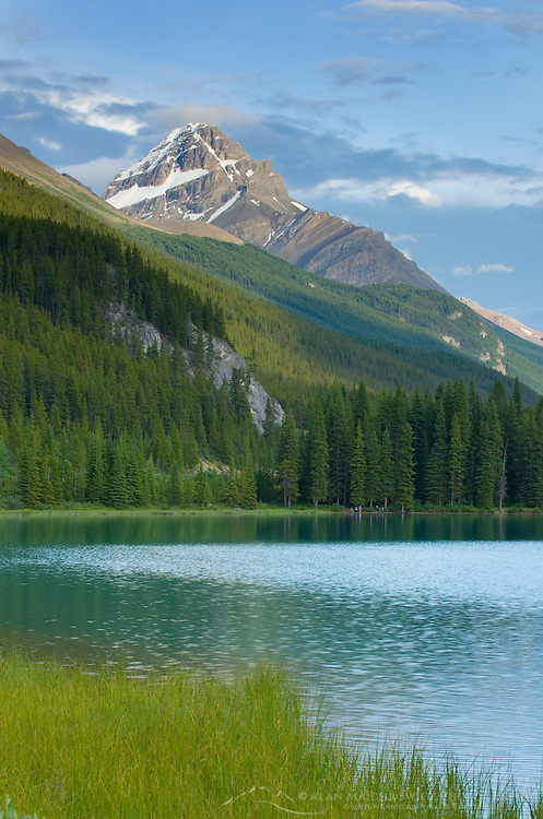 Mount Weed seen from Waterfowl Lake, Banff National Park Alberta Canada