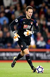 AFC Bournemouth goalkeeper Asmir Begovic