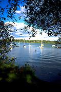 Sailboats in Lake Nokomis.  Minneapolis Minnesota USA