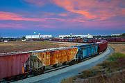 Kansas / Hutchinson / Train Terminal / Loading Grain Into Trains / Grain Elevators / Dawn