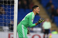 Cardiff city goalkeeper Neil Etheridge looks on.  EFL Skybet championship match, Cardiff city v Ipswich Town at the Cardiff city stadium in Cardiff, South Wales on Tuesday 31st October 2017.<br /> pic by Andrew Orchard, Andrew Orchard sports photography.