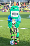 Mascot during the EFL Sky Bet League 2 match between Forest Green Rovers and Salford City at the New Lawn, Forest Green, United Kingdom on 18 January 2020.