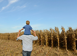 Father carrying his son on shoulders in field, Bavaria, Germany