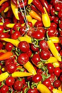 Paprika chillies drying - Kalocsa Hungary